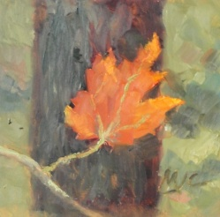 Maple Leaf 2013 6x6 oil on board